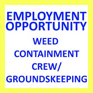Shell employment