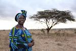 Wangari e as árbores da paz