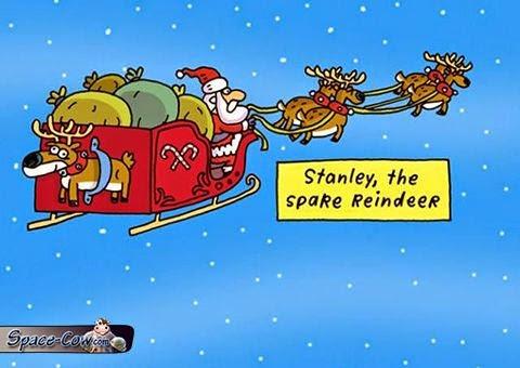 funny Santa reindeer picture