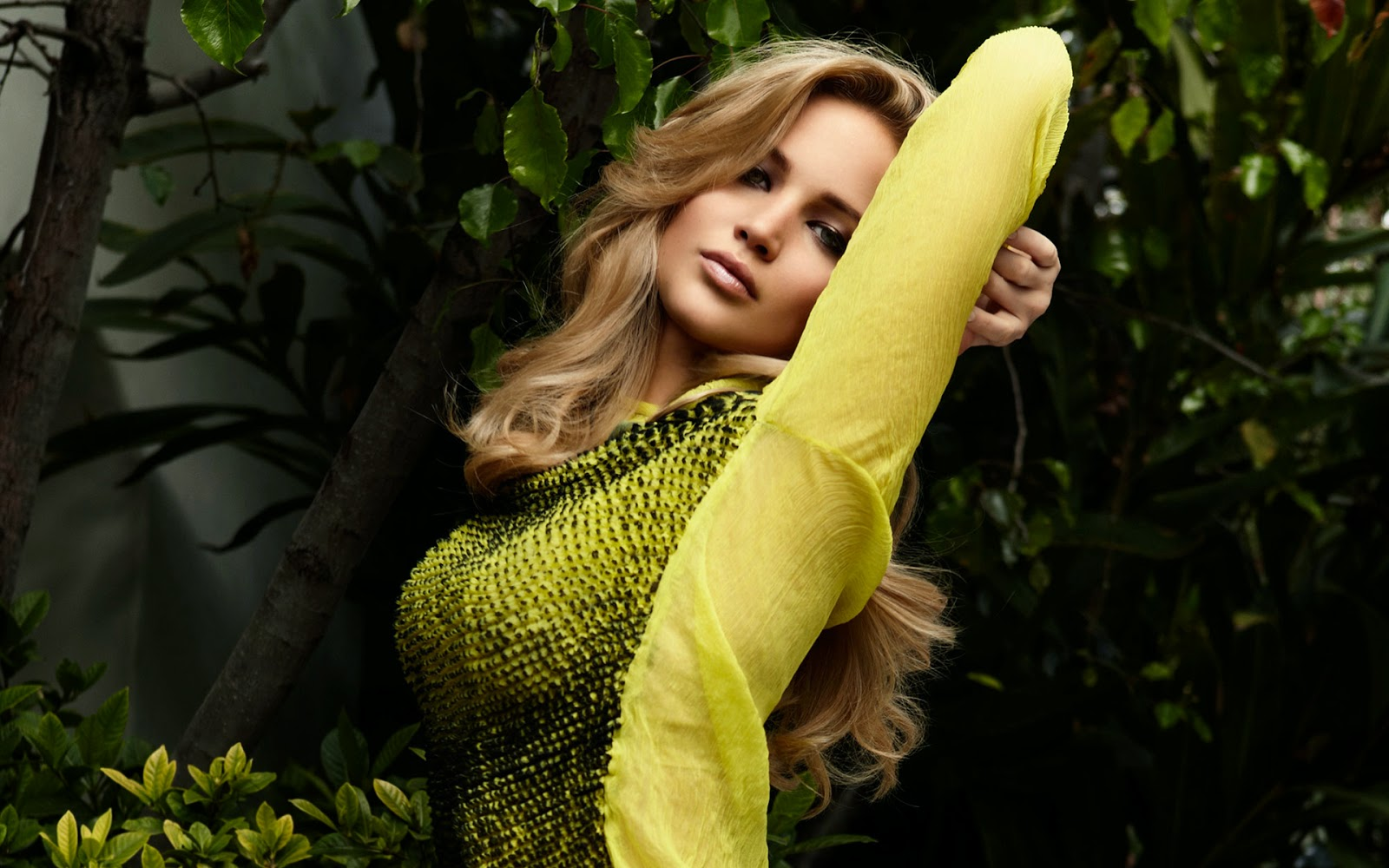 jennifer lawrence wallpaper collection