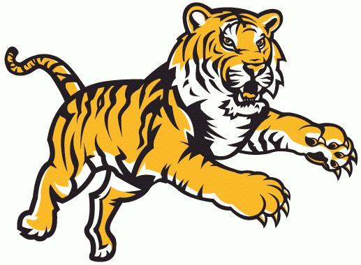 ... de Tigres, Onça, Jaguar, Tigre Pardo Feroz para Colorir, Mascote de