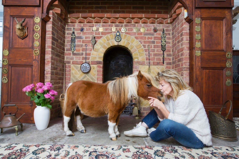 caballo con enanismo