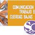 Comunicación, Trabajo en Equipo y Cuerdas Bajas