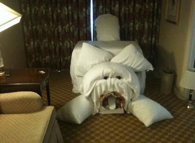 Funny Hotel Pranks Seen On www.coolpicturegallery.us