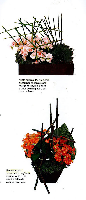 Revista Nova Edição Ikebanas com Begônias