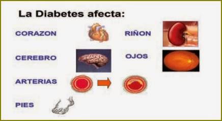 biologia: La diabetes