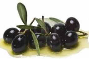 http://fr.wikipedia.org/wiki/Olive