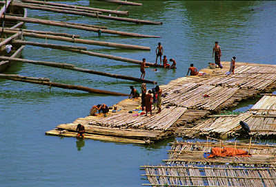 huge bamboo rafts