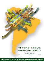 VI FORO SOCIAL PANAMAZÓNICO - COBIJA 2012