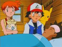 assistir - Pokémon 195 - Dublado - online