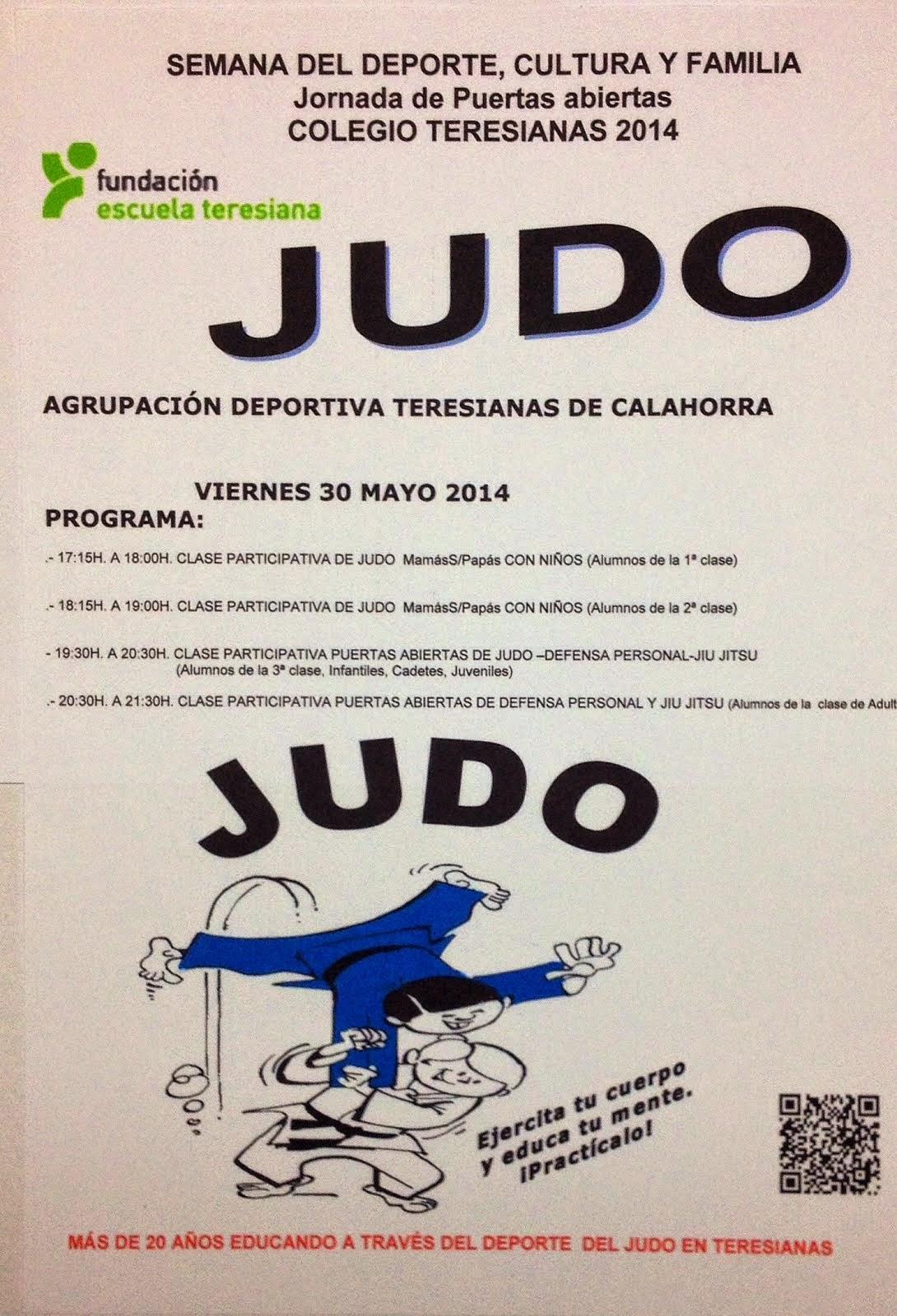 JUDO TERESIANAS. Semana Deporte y Familia 2014