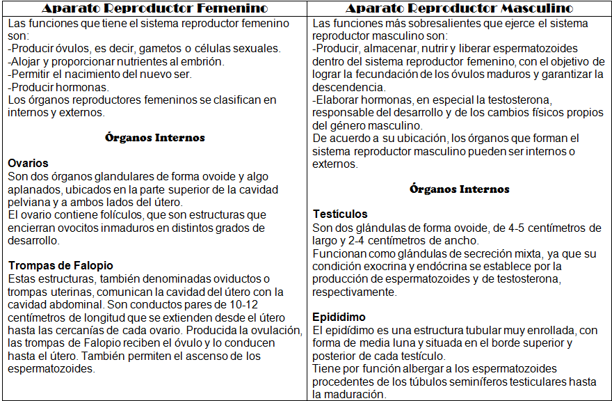 Martha Arámbula: Cuadro Comparativo \