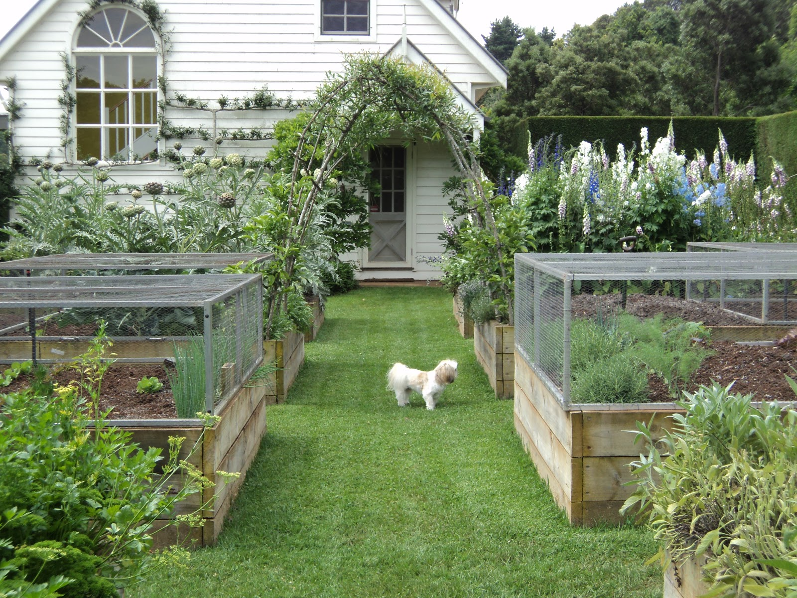 Raised Bed Height Square Foot Gardening