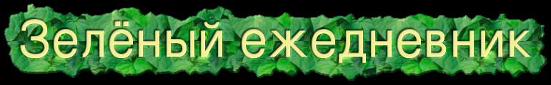 Зелёный ежедневник