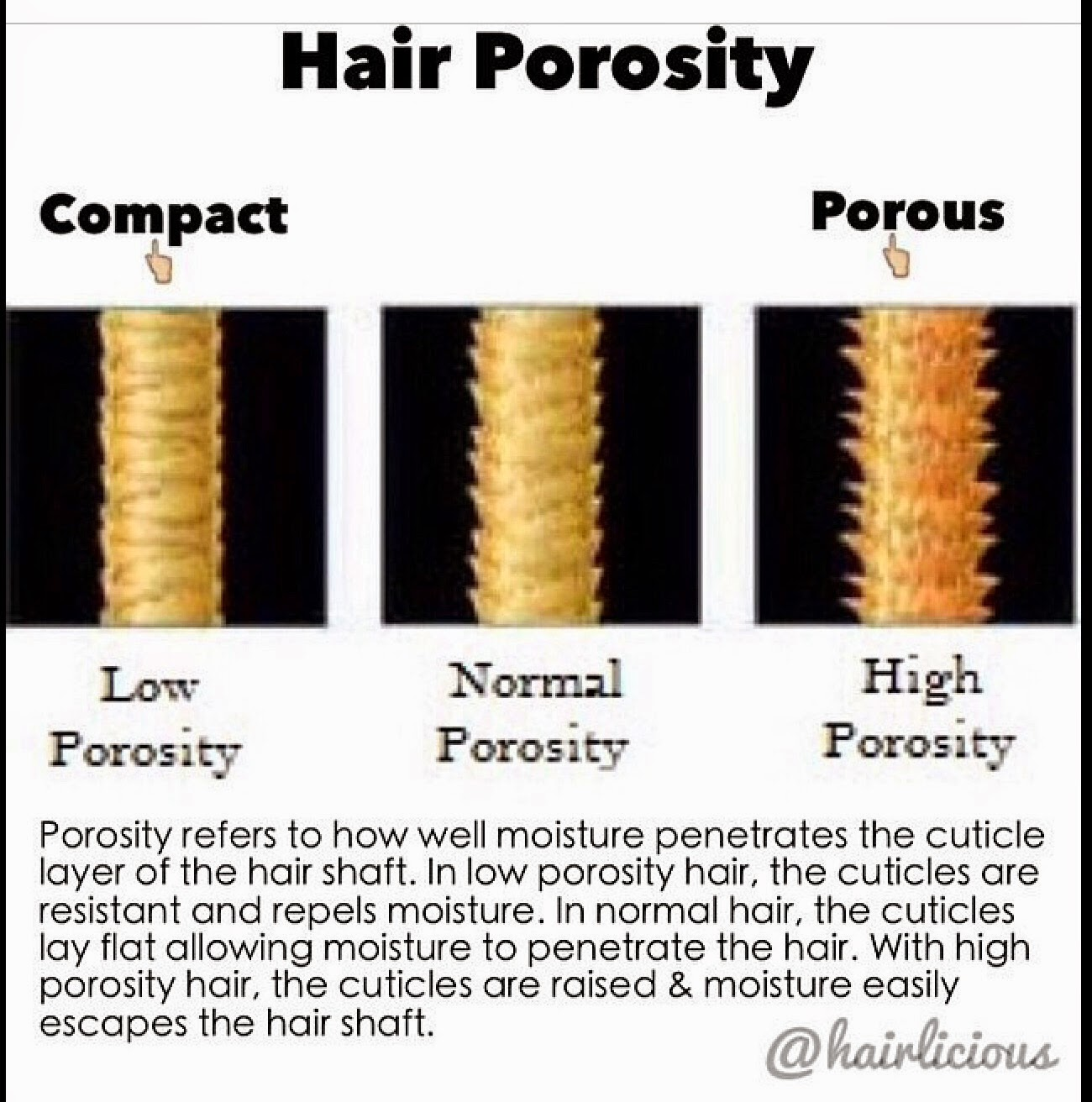 Afro pean queen hair porosity this is a test you can try to see where your hair fits in urmus Choice Image