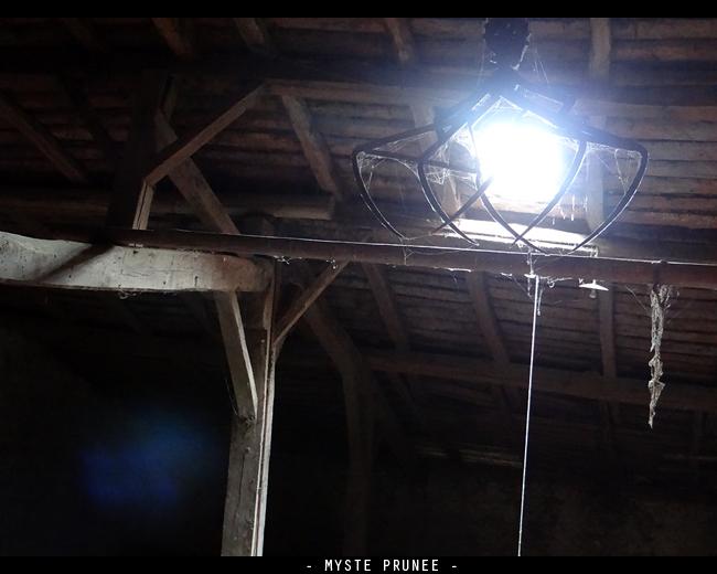 Gallerie Photo [Myste Prunee] DSC01000