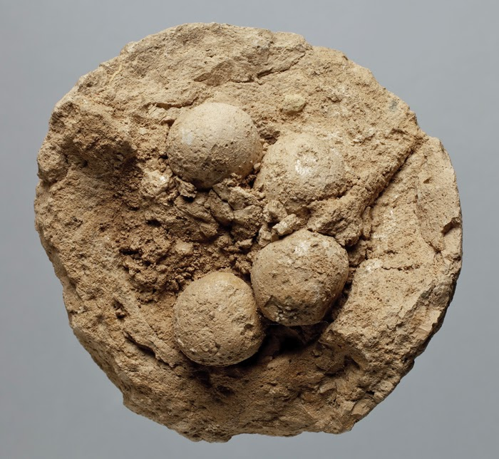 Proto-Elamite clay balls are world's 'first data storage system'