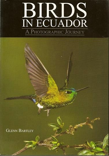 http://avianreview.blogspot.com/2011/10/birds-in-ecuador.html