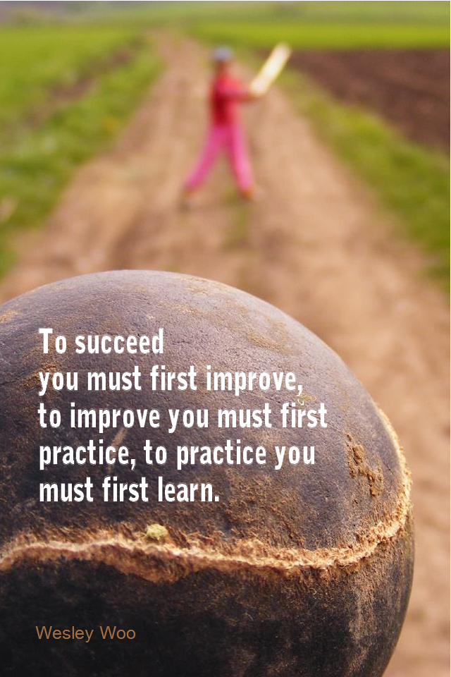 visual quote - image quotation for SELF-IMPROVEMENT - To succeed you must first improve, to improve you must first practice, to practice you must first learn. - Wesley Woo