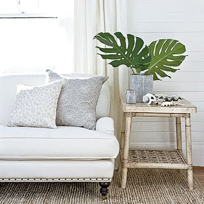 palm leaves decor