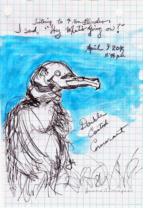cormorant late night sketch, lamy safari