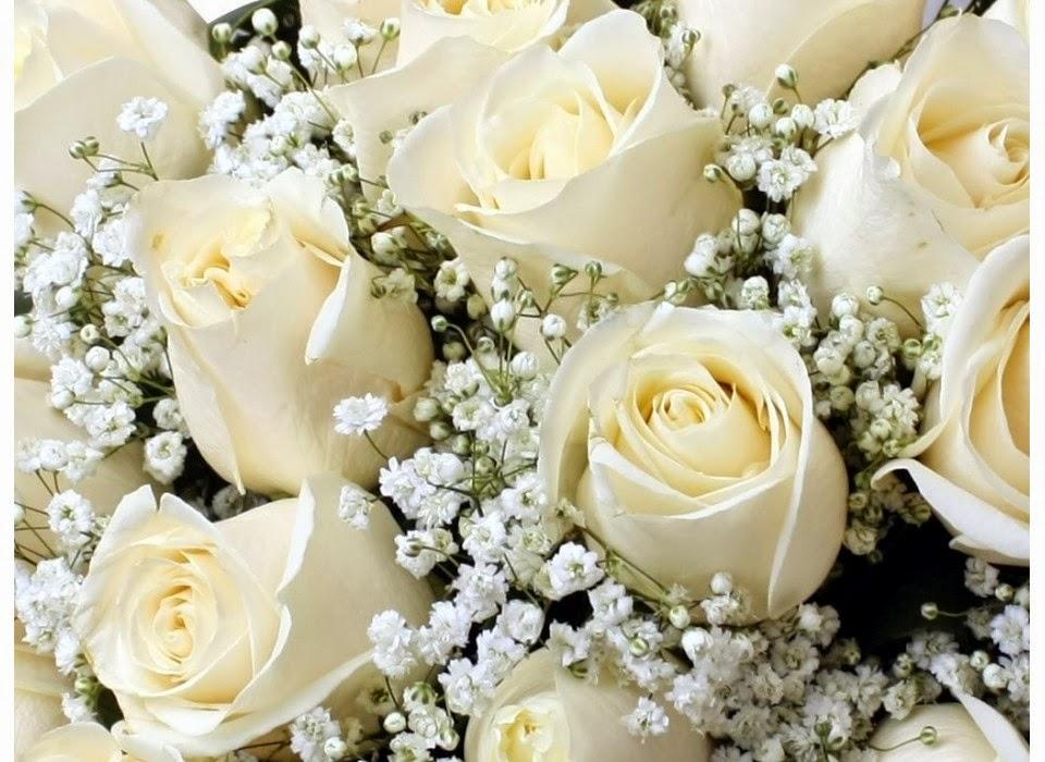 Rosas Blancas Imágenes De Archivo Vectores 123RF - Imagenes De Ramos De Rosas Blancas