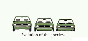 EVOLUCION DE UNA ESPECIE