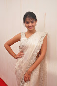 Nikitha Narayan saree photo shoot-thumbnail-17