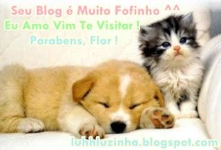 Selinho+do+Place+1.jpg (320×218)