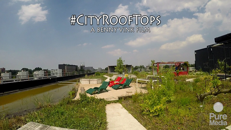 City Roof Top's