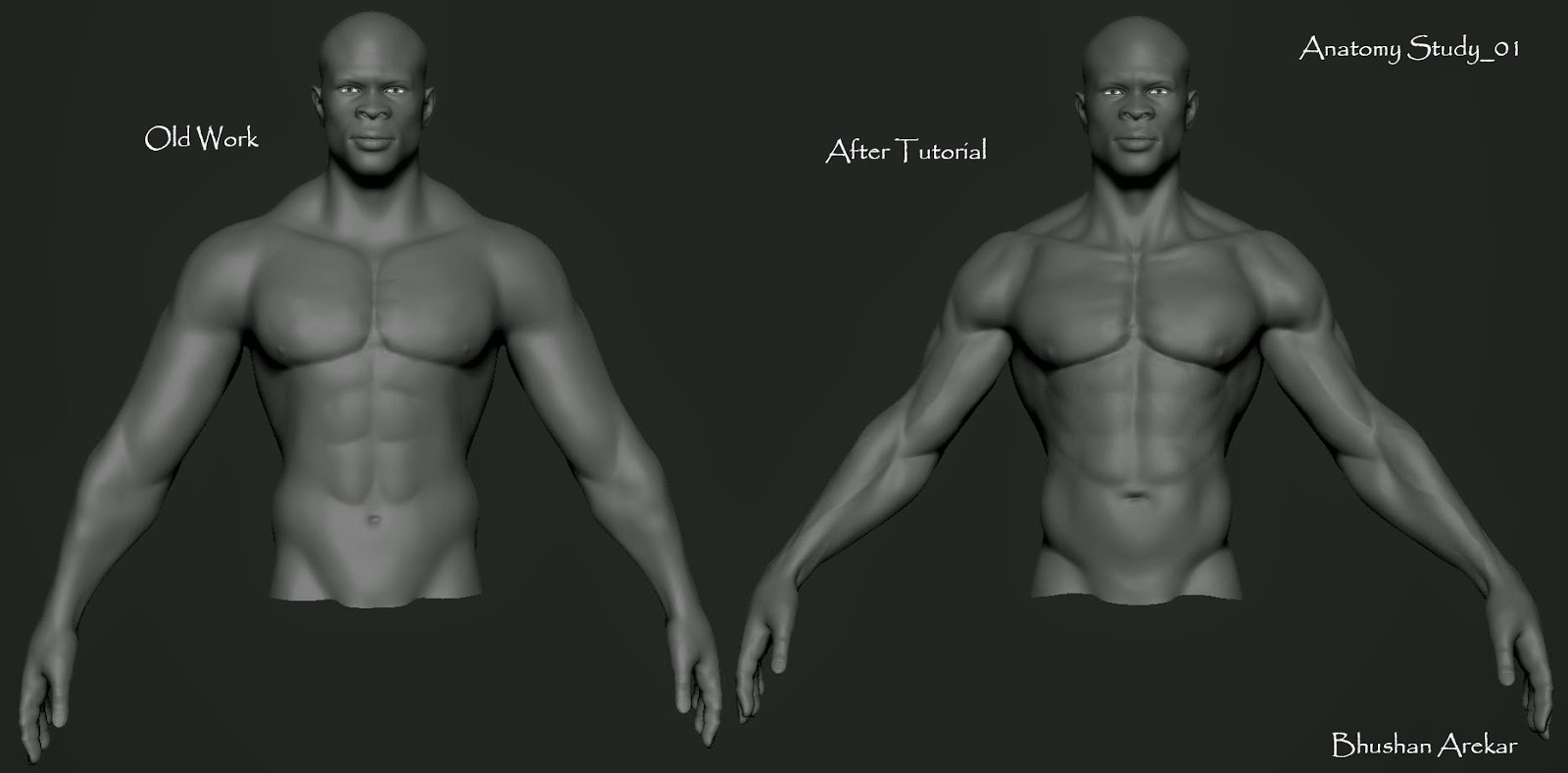 Anatomy+Study_01b.jpg