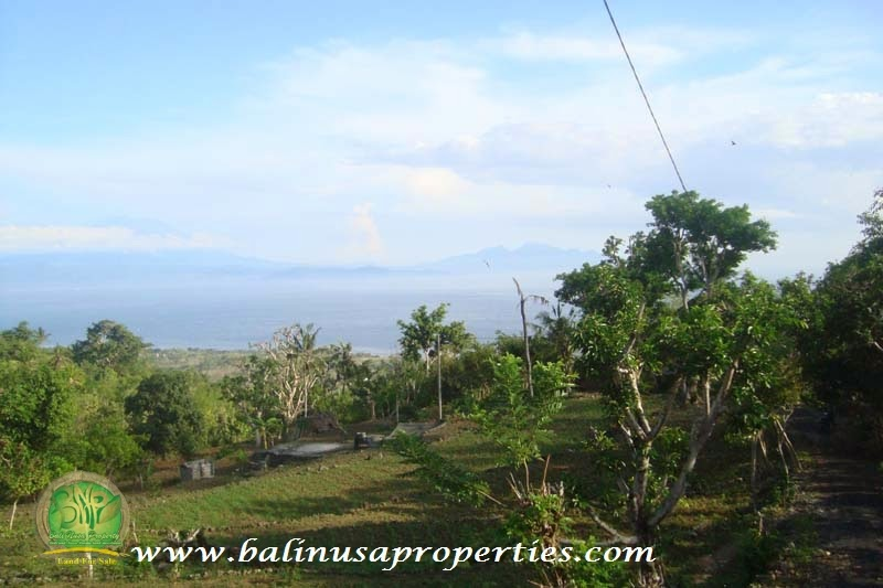 Deket dengan Pelabuhan Nusa Penida