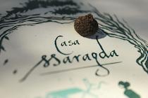 7º Proyecto - CASA MARAGDA