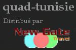 quad-tunisie