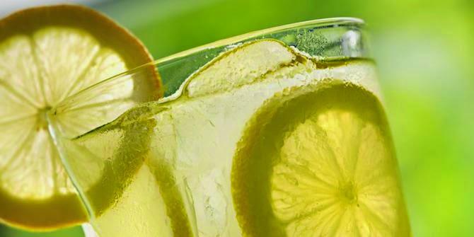 Setiap insan tentu membutuhkan yang namanya air Manfaat Air Lemon