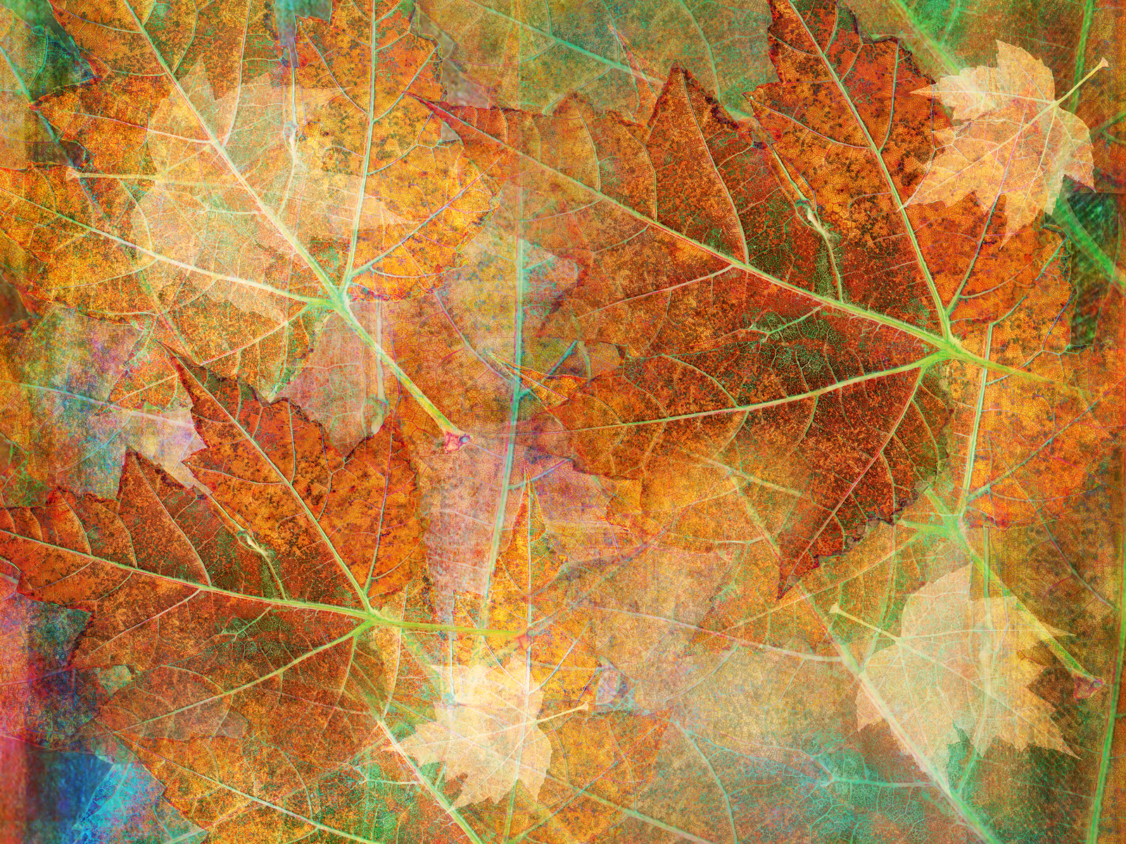 vintage fall backgrounds with - photo #8