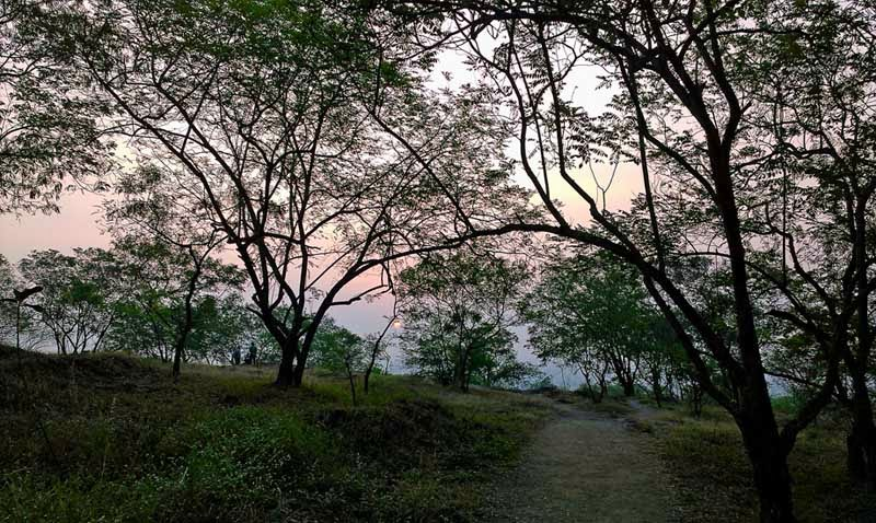 Sunrise from a Pune Hill