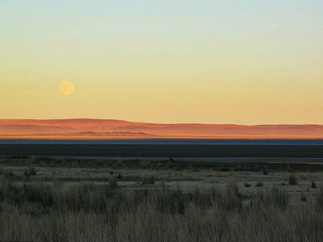 Harvest Moon from the Oregon Outback by Beth Hemmila