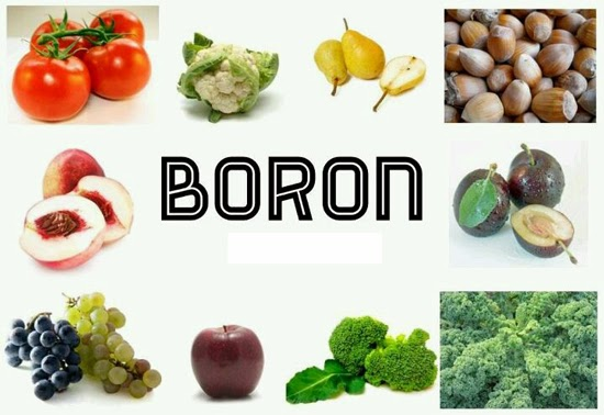 Food Sources High In Boron