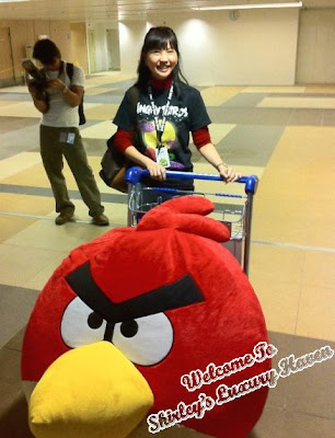 angry birds asian challenge singapore changi airport