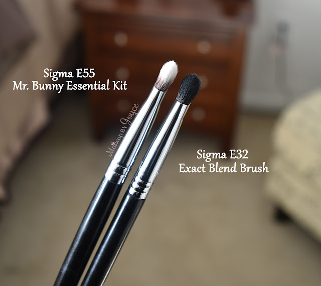 Sigma E55 vs E32 Brush Review