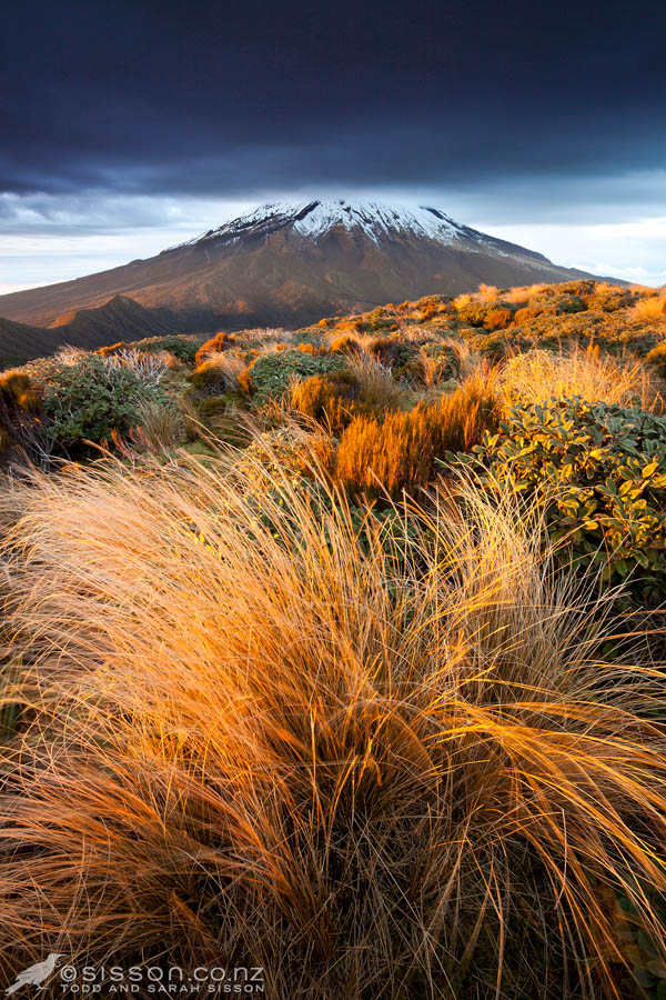 photo of Mt Taranaki at dawn Mt Egmont National Park New Zealand By Todd Sisson