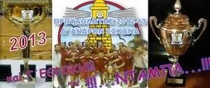 ΝΤΑΜΠΛ 2012 - 2013