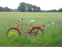 Pimpa din cykel ...