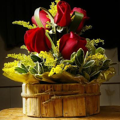 imágenes de flores rojas hermosas