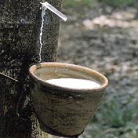 Natural Rubber Consumers Want Future Trading To Stop