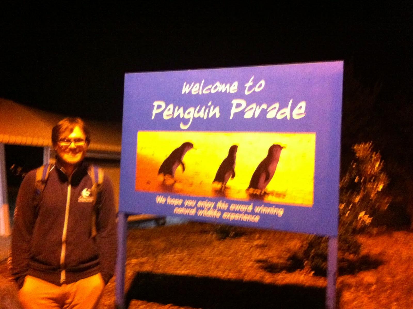 Penguin Parade Philip Island
