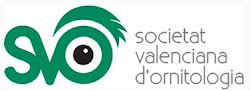 Socio de: