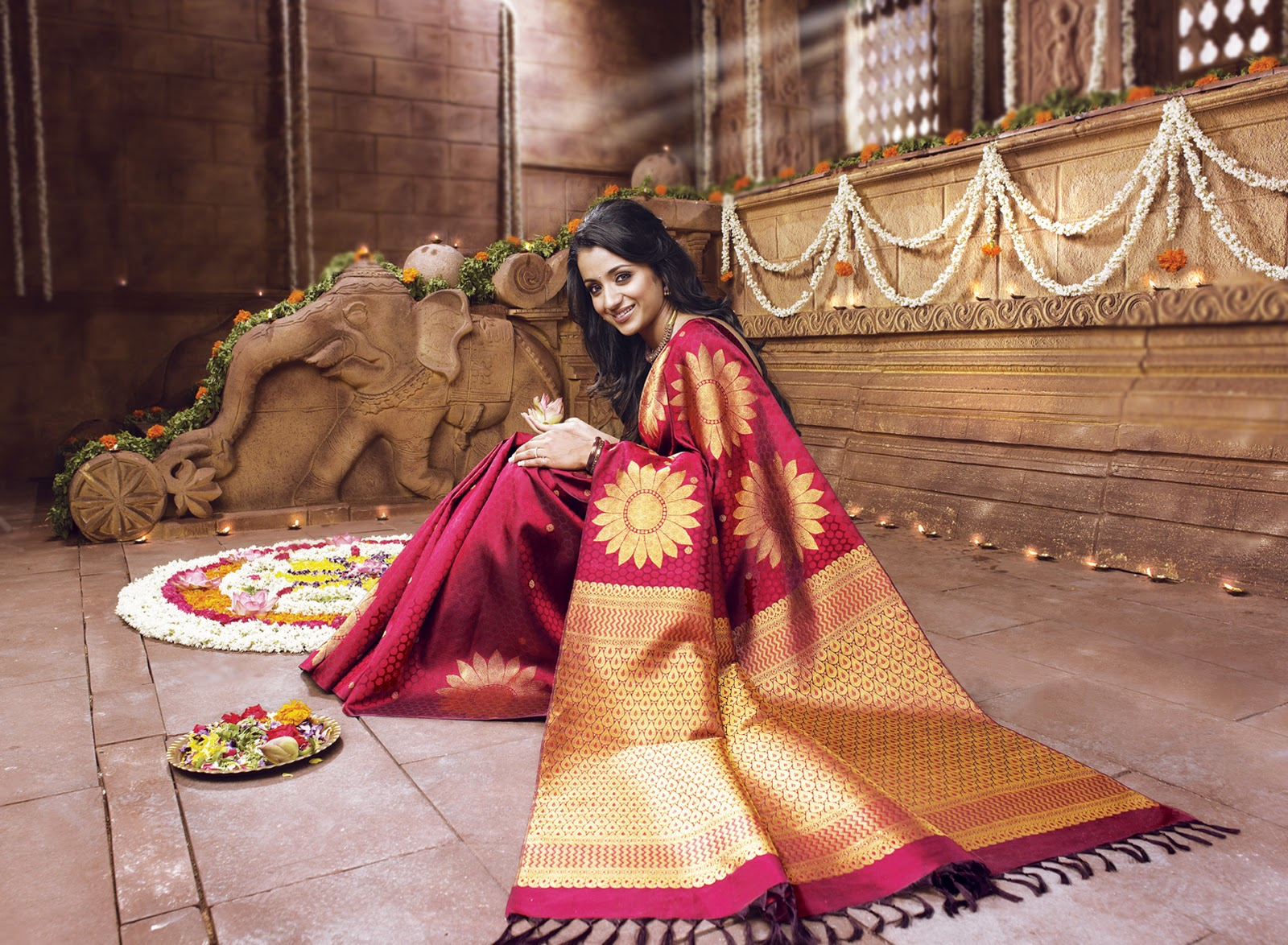Actress in Silk Sarees