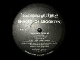 Shadez of Brooklyn – Calm Unda Pressure (VLS) (1998) (192 kbps)